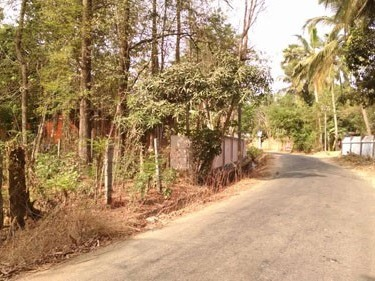 20 Cent Plot For Sale At Koduvayoor Palakkad Kerala