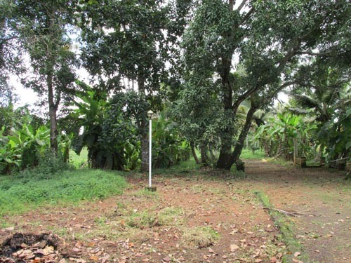 20 Acre Wide Area Water Front Land For Sale At Vaikomkottayam Kerala Real Estate