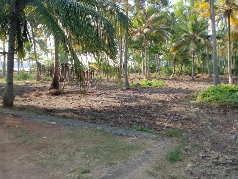 1.27 Acres Lakefront Land for sale at Arattupuzha,Alappuzha.
