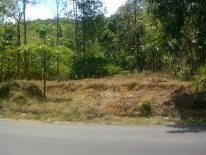 20 Cents of Residential Plot for sale at Karimkunnam,Thodupuzha,Idukki.