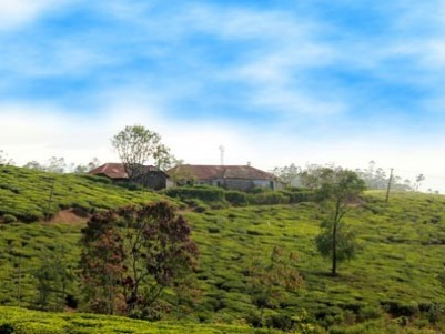 1000 ACRES OF TEA PLANTATION WITH FACTORY FOR SALE IN IDUKKI, KERALA.
