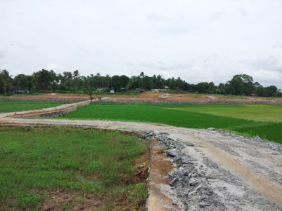 5 to 9 Cents of Residential Plots for sale at Edathara,Palakkad.