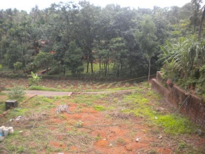 Near Cherupuzha,12 Cent house plot