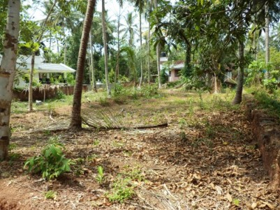 11 Cents of residential  plot for sale at Kunnamangalam,Kozhikode.
