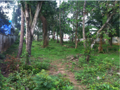 34 Cents of Original Land sale Ollur,Thrissur District.