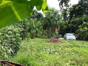 House Plots at Wellshore Gardens , Thiruvaniyur,Ernakulam District.