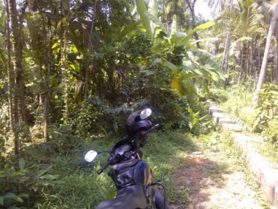 50 Cent  Plot for Sale at Mokavoor,Kozhikode District.