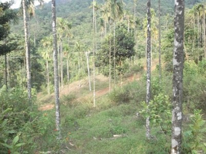50 Cents of house plot sale at Thirumeni, Cherupuzha, Kannur.