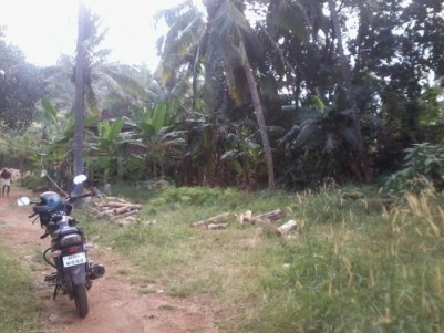 10 Cents of good Residential plot for sale at Urakam,Thrissur.