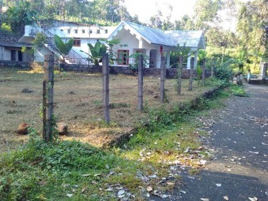 For Sale - 11.3 Cent Square Plot in Paika for Residential Purpose with Tarred Roads