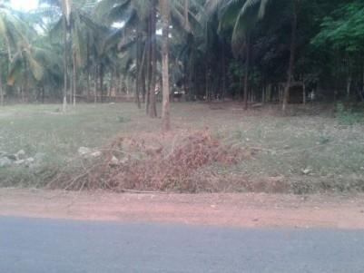 20 Cents of Residential land  for sale at Kallikavu,Malappuram.