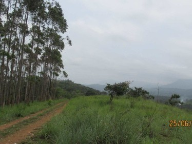 Land for sale at Rajakumari, Munnar