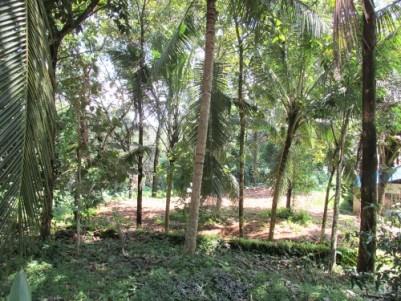 Villa for Sale at Ponkunnam Town, Kottayam
