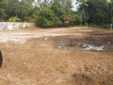 Rectangle Original Land Near St.Micheals Collage Cherthala
