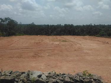 Residential Land/Plots Near Thrippunithura Hill Palace(2.75 Lakh/Cent)