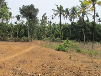 40 Cent land for sale near Irinjalakuda,Avittathur,Thrissur.