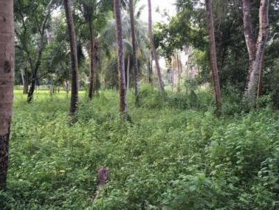serene residential plot near Guruvayoor