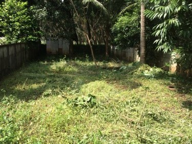 5 cents of residential land in INDIRA NAGAR, MANNUTHY