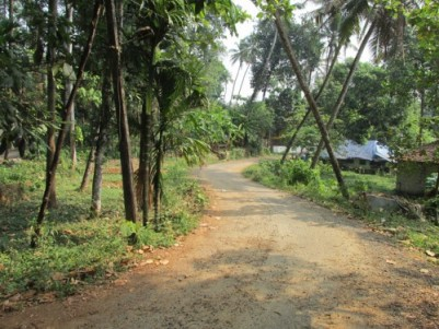 85 Cent Land for sale at Muvattupuzha,Ernakulam.