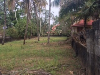 Residential land for sale at Mavelikkara, Alappuzha