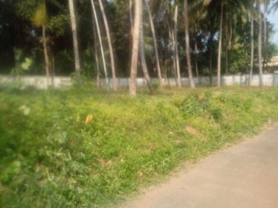 17 cent Land for sale in Perumbillisery West (near Cherpu)