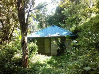 2.7 Acres of Pattayam Land for sale at Kambilikandam,Munnar,Idukki.
