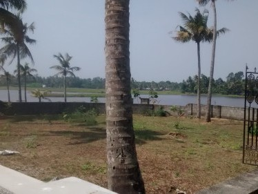3.75 - 4 Cents of House plots for sale at Muppathadam, Near Eramam,Ernakulam District.