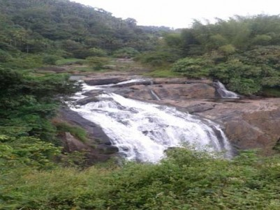 3 Acres of Prime Property for sale at Mankulam,Near Munnar,Idukki.