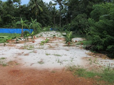 40 Cents of prime land for sale at Kalavoor, Alappuzha.