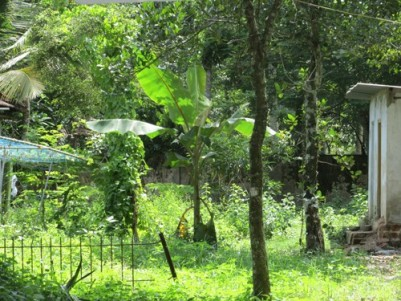 9 Cent land for sale at Pazhaveedu,Alappuzha.