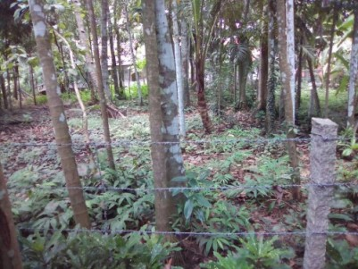 Residential Land for sale at Kuttanad,Alappuzha