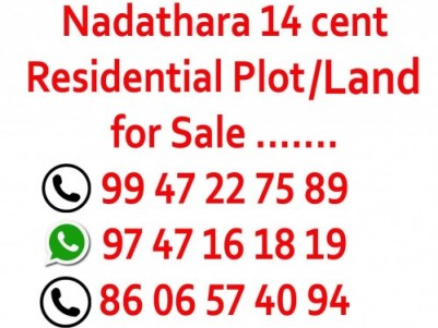 Nadathara 14 cent Residential Plot for sale