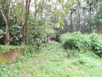 Residential Land for Sale Near Nedumbassery Airport, Ernakulam