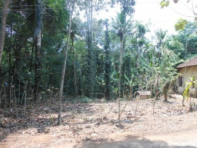 25 cent Land sale for near road side