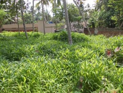10.600 Cents of Residential land for sale at Peroorkada, Ambalamukku,Trivandrum.