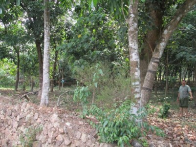 30 Cent Land for sale at Arakkunnam,Ernakulam.