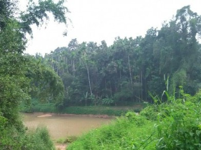 10 Cents of Beautiful Riverfront Villa plots  for sale at Anakkayam, Malappuram.