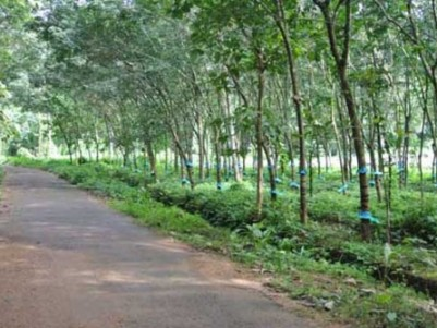 2.81 Acres Land for sale at Mallappally,Pathanamthitta.