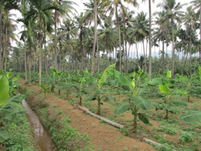 3.5 Acres of Residential Land for sale at Chalakkudy,Thrissur.