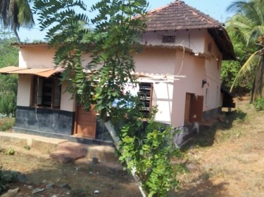 84 Commercial cum Residential Land for Sale at Paruthipara,Shornur,Palakkad.