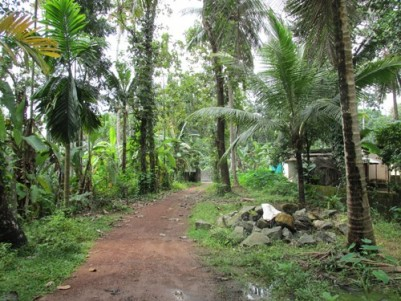52 Cents of Land  with 2 Old Houses for sale at Paruthumpara Jun, Kottayam.