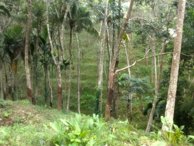 Residential Land for Sale at Aryankavu, Kollam