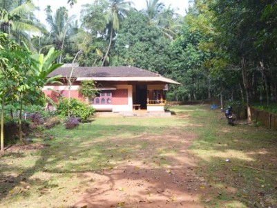 4 Acre Land with Nalukettu Model House for sale at Perintalmanna,Malappuram.