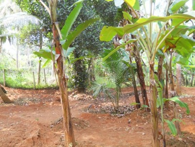 10 Cents of Plot for sale at Ottapalam,Palakkad.