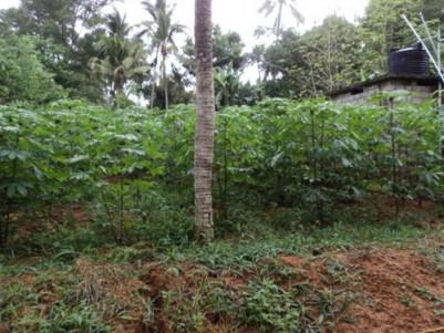 1.26 Acres of residential Land for sale at Valiyakunnu, Attingal,Thiruvananthapuram.