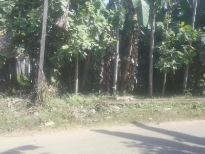 Residential plot in Aranmula,Pathanamthitta