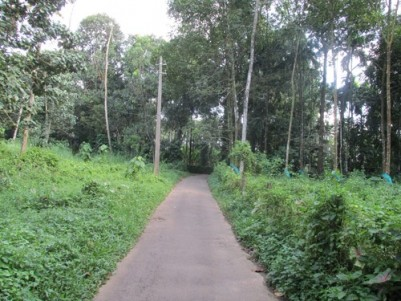 1.70 Acre Rubber plantation for sale at Kanjirappally to Erumely Road,Kottayam.