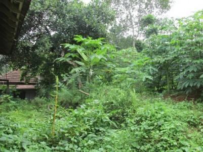 23 Cent Residential Land for sale at Ettumanoor, Kottayam