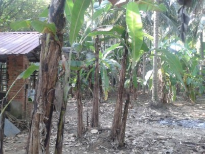 8 Acre Agriculture Land for sale at Erumapetty,Thrissur