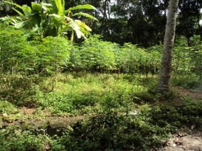 5 Cents of Land for sale at Melethonnakkal,Attingal,Thiruvananthapuram.